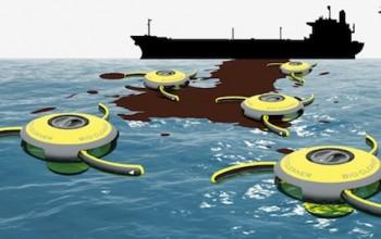 Le economie alternative vengon dal mare (inquinato)