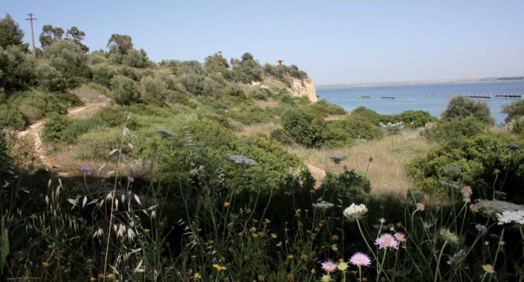 Turismo a Taranto: proposta di un itinerario geoarcheologico
