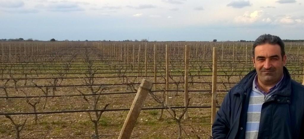 Erminio Campa, il viticoltore apprezzato dal Papa