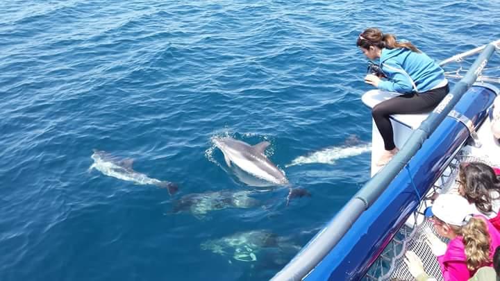 Taranto, la città de Le Terre dei Delfini: la conferma su Rai Tre