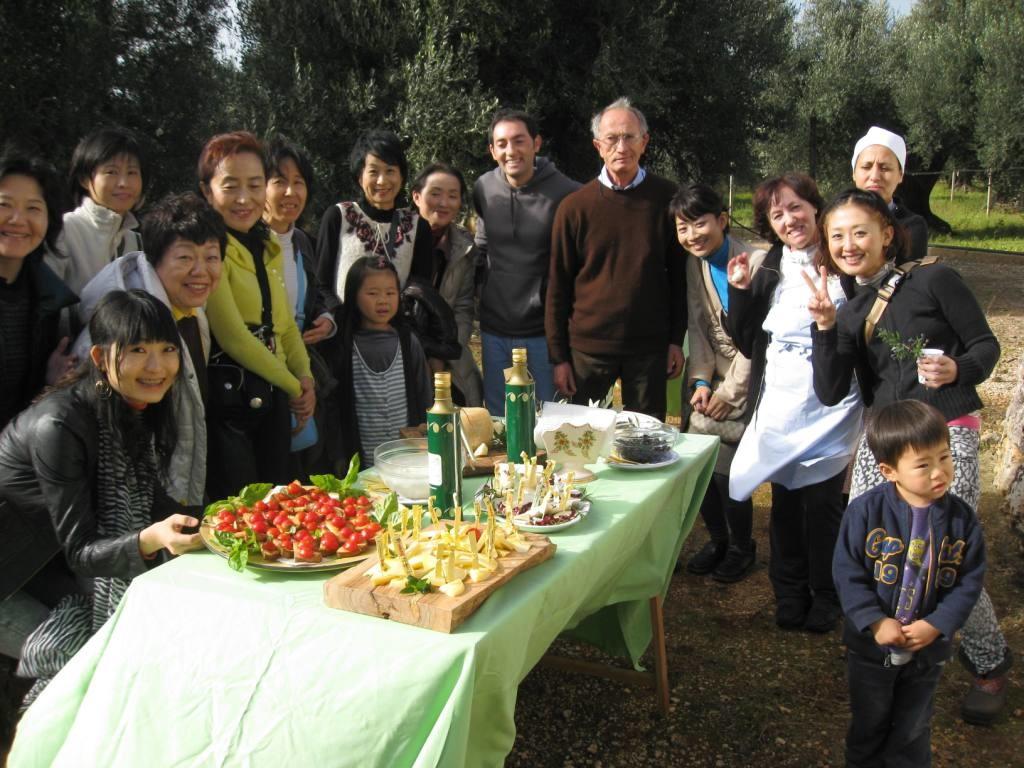 olive masseria salinola