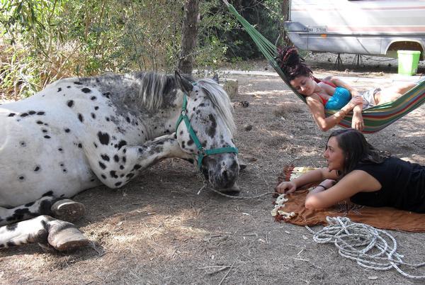 Fattoria Il Noce: a Manduria, oasi per bambini da 0 a 100 anni