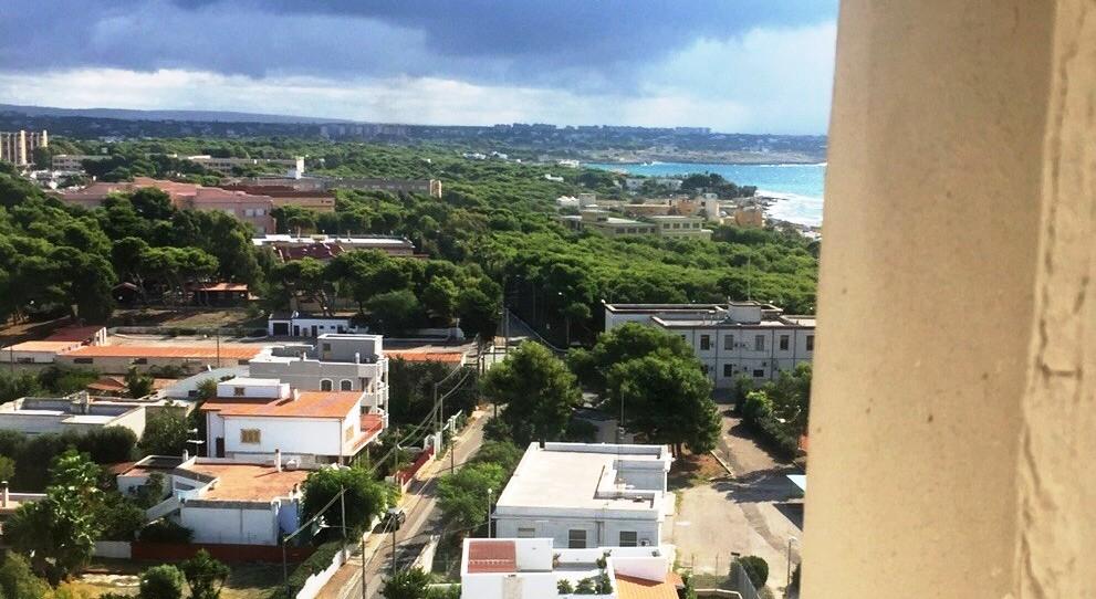 Taranto è più verde grazie a 60 ulivi: ecco nomi e cognomi