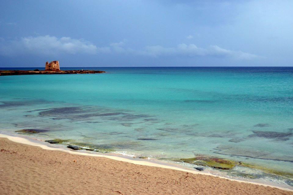 Il mare d'inverno, a Taranto poesia di verde e d'azzurro