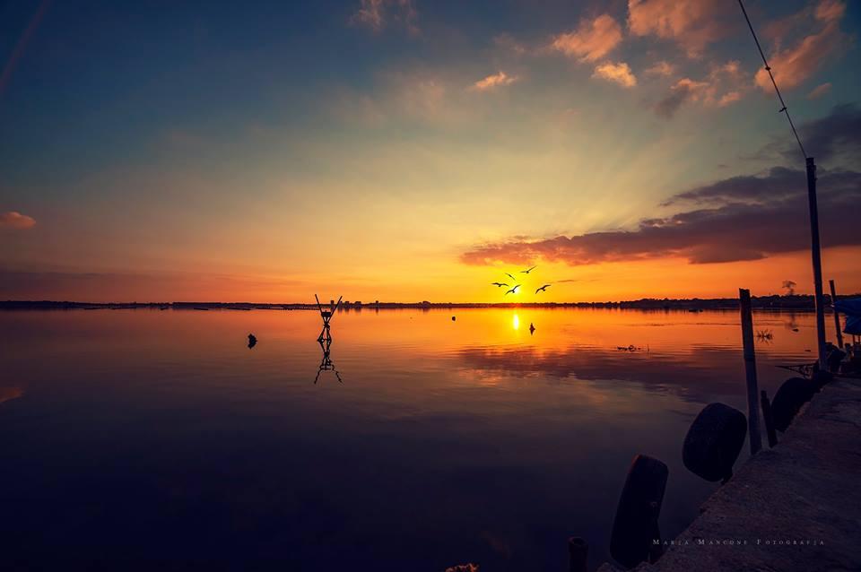 Tour dei tramonti: emozioni e buon vino de Le Terre dei Delfini