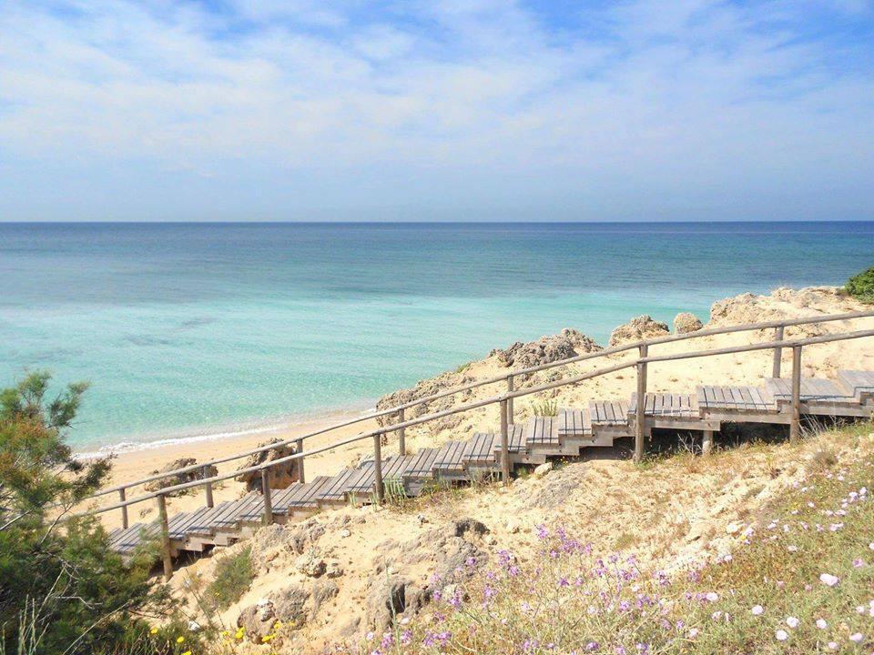 Contro le trivelle nel Golfo di Taranto, votiamo SI!
