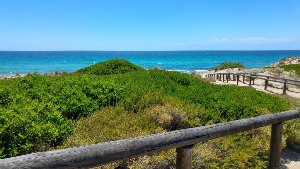 Spiaggia del Conte
