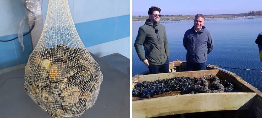 Una rete biodegradabile per i mitili: Taranto dà l'esempio all'Europa