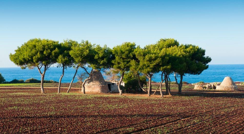 Il mare di Taranto conquista tre Bandiere Blu: ecco dove